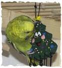 Kiki an Weihnachten
